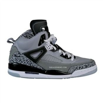 315371-091 Air Jordan Spizike Cool Grey Stealth Black Light Graphite White A23008